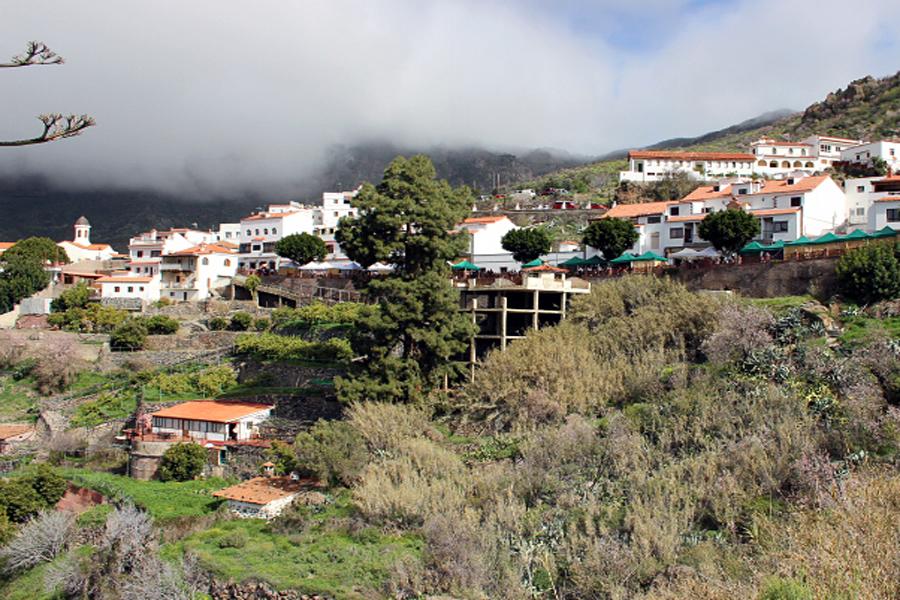 Canaria_02